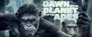 Dawn Of The Planet Of The Apes (2014) - Sự Khởi Đầu Của Hành Tinh Khỉ
